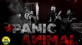 Wedding Band - Panic Animal