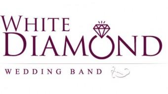 Wedding Band - White Diamond